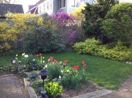 backyard spring