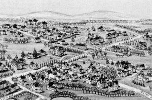1890 Randlett map