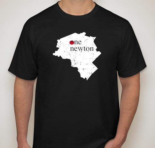One Newton