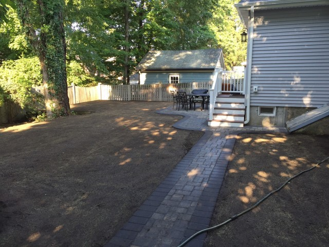 backyard done